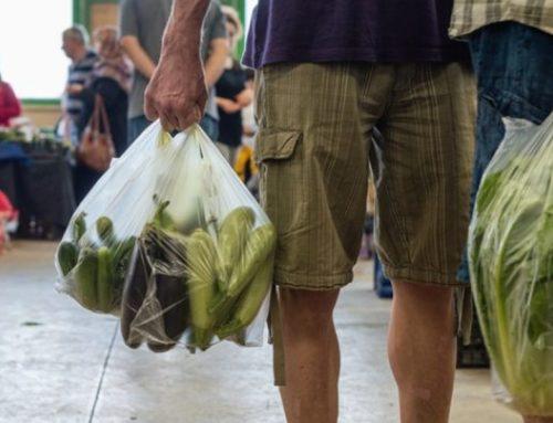 Sacchetti biodegradabili: arrivano i primi chiarimenti